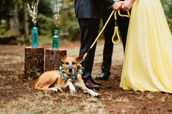 kat-miles-wedding-339.jpg