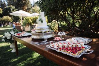 sales-wedding-0752.jpg