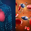 La nanotecnología en la medicina.