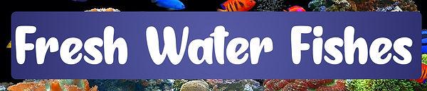 Fresh Water Fishes.jpg