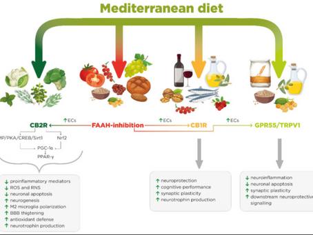 Hemp Oil: Better than the Mediterranean diet, but illegal.