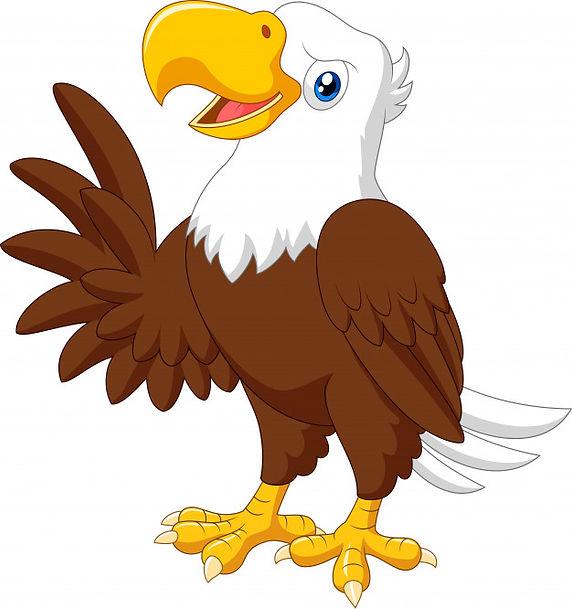 aguia-engracada.jpg