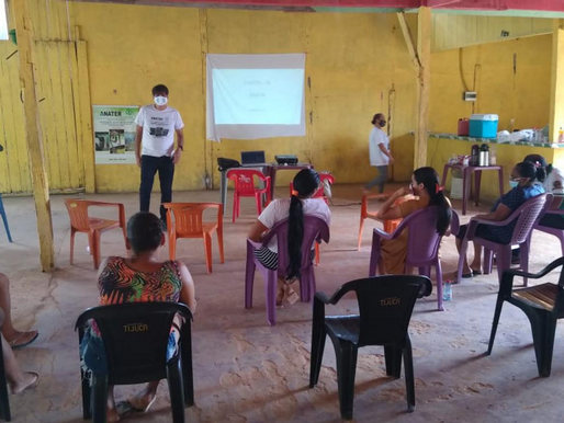 Extrativistas de açaí de Barcarena recebem capacitação da Emater