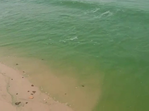 Água verde em praias de Barcarena assusta moradores