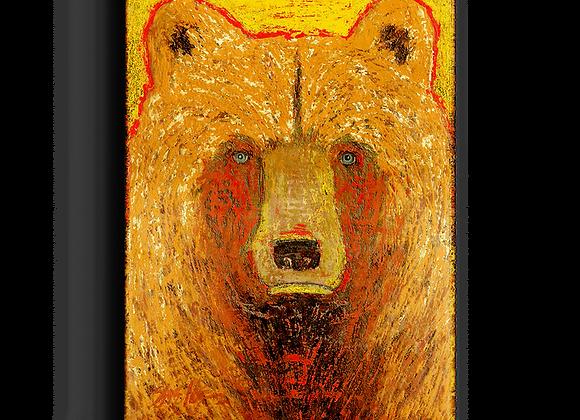 Hawk Bear Box Art