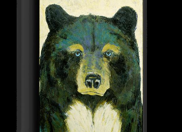 Timber Bear Box Art