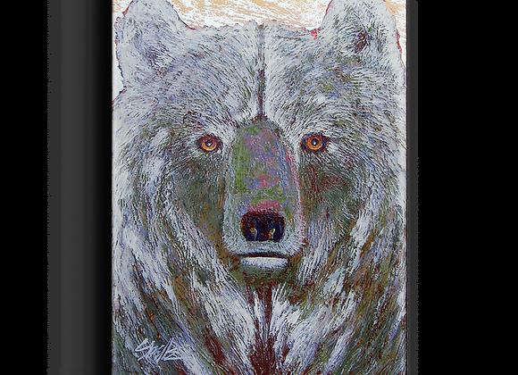 Grey Bear Box Art