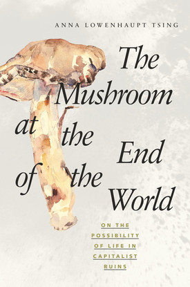 The Mushroon at the End of the World