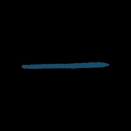 blue line-01.png