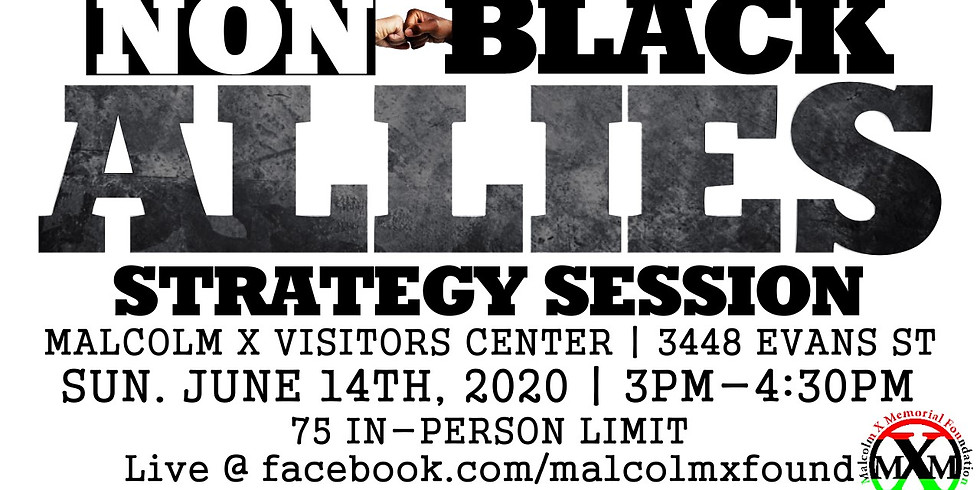 SOLD - OUT! Non-Black Allies Strategy Session