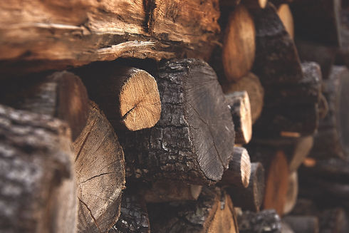 bark-chopped-wood-dark-122588.jpg