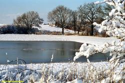 Lux Winter3
