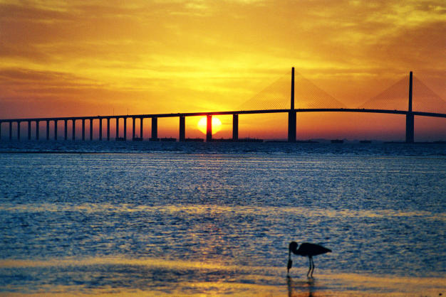 23Kranich still wash the Fish, Sunrise, Ft de Soto Park,  Florida
