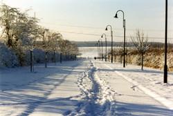 Lux Winter6