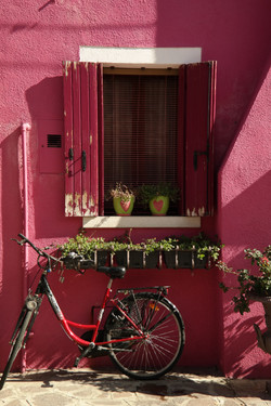 Burano's famous colored house