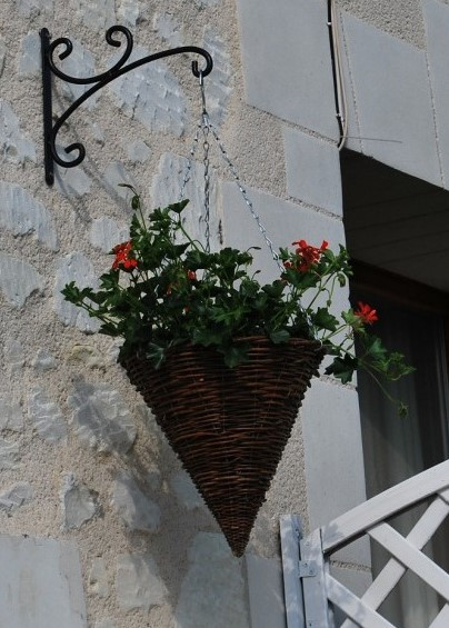 Hanging basket cropped (2)