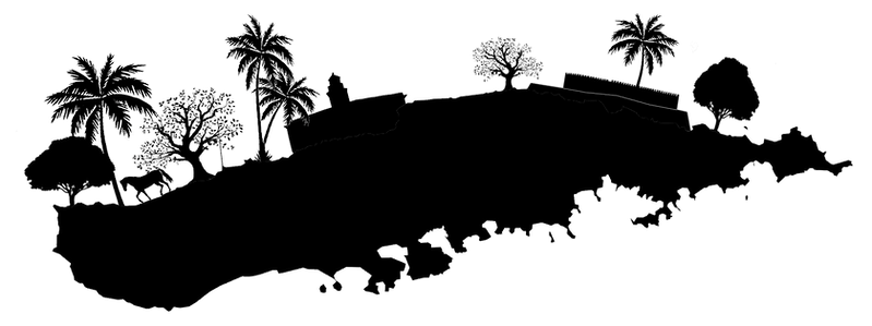 vieques outline.png