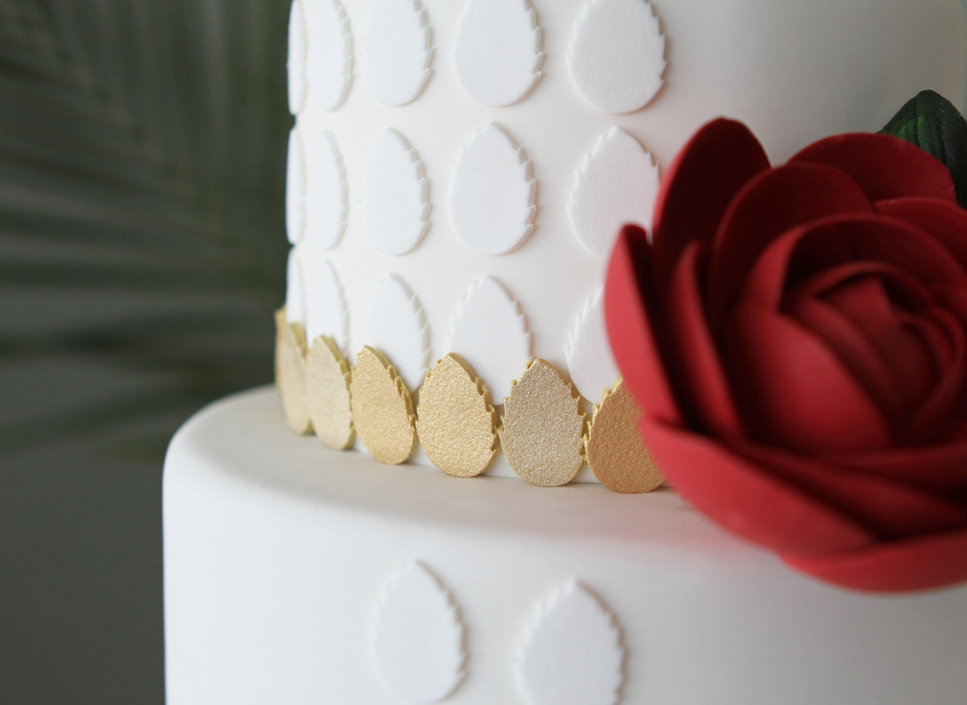 white rose detail