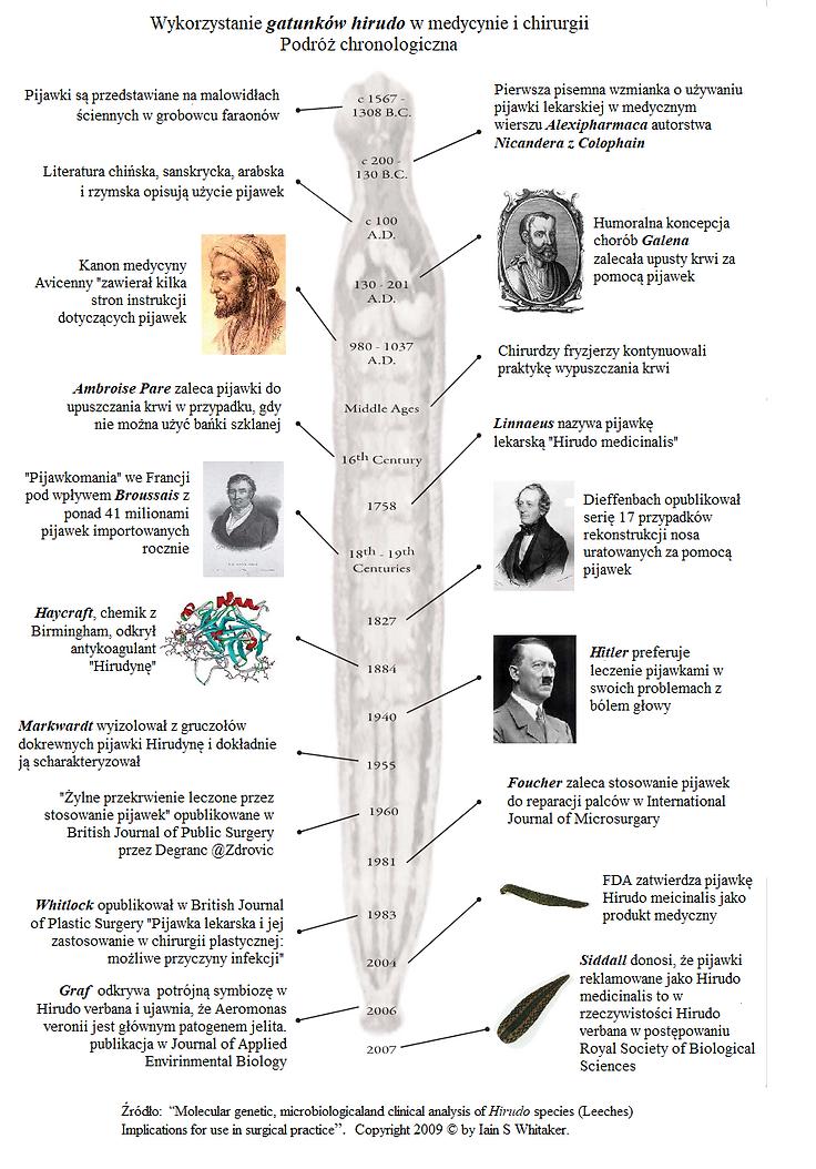 historia hirudoterapii