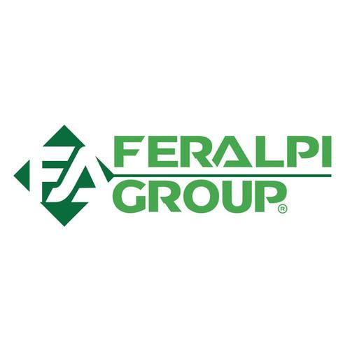 Logo - Feralpi group.jpg
