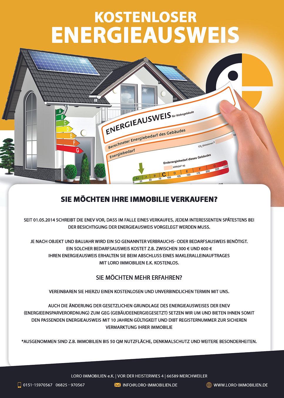 DINA4 Onlineflyer Energieausweis.jpg