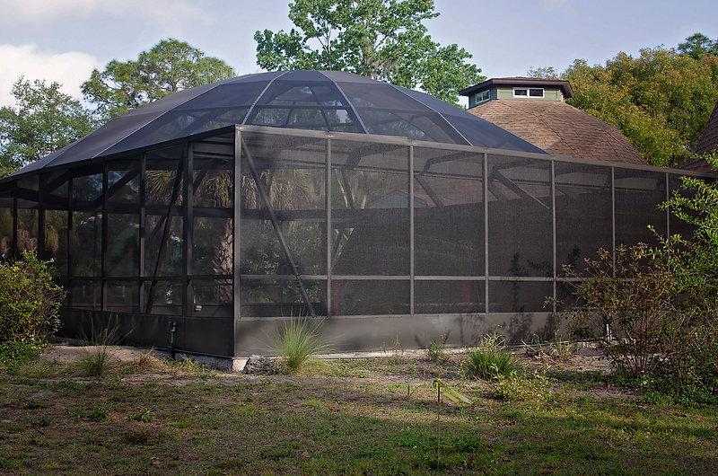 Bronze Pool Cage