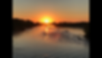 Sunset ducks (1).PNG