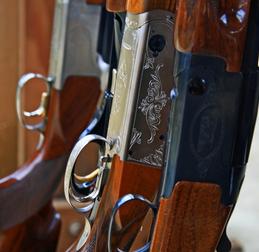 New Gun Sydrome