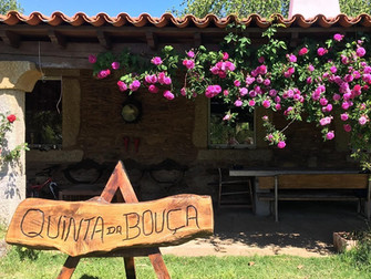 Quinta Da Bouca Sporting Estate