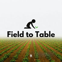 Copy of instagram field to table cover 3