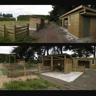 farm for animals, New Zealand