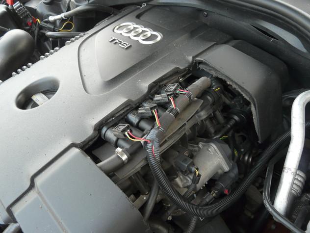 P1210704.JPG