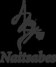 naitsabes logo.png