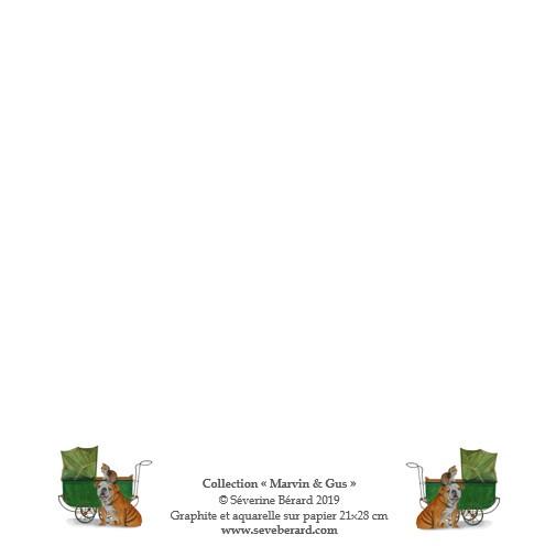 FELICITATIONS POUR UNE NAISSANCE - Dos de la carte
