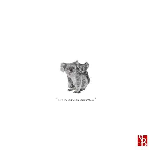PETITS KOALAS - Un peu de douceur