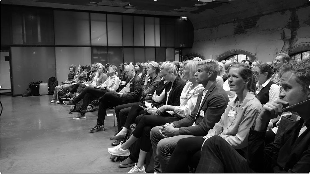 Publikum: CCSDI-konferansen 2019