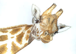 Giraffe-PatS.jpg