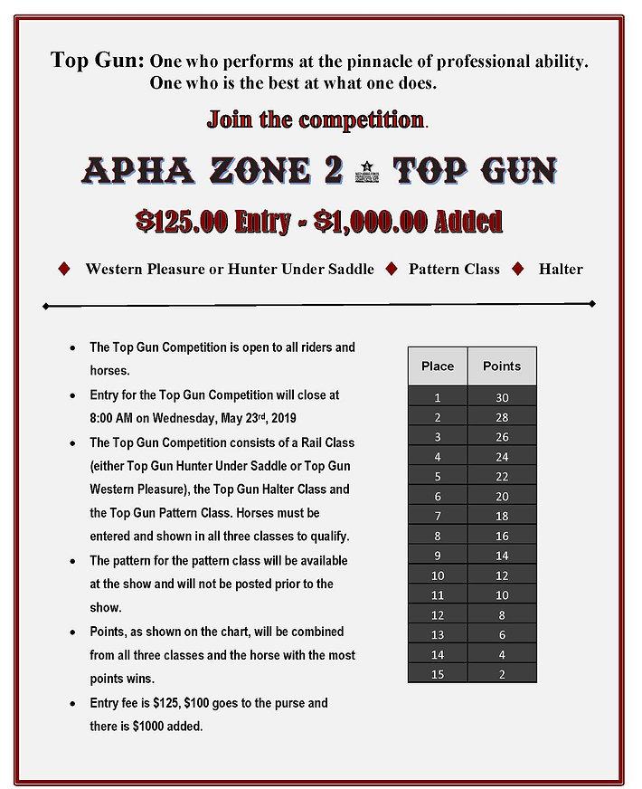 Top Gun Flyer.jpg