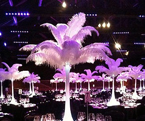 Ostrich Feather Centrepieces fo Hire