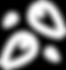 noun_seeds_1651816_edited.png