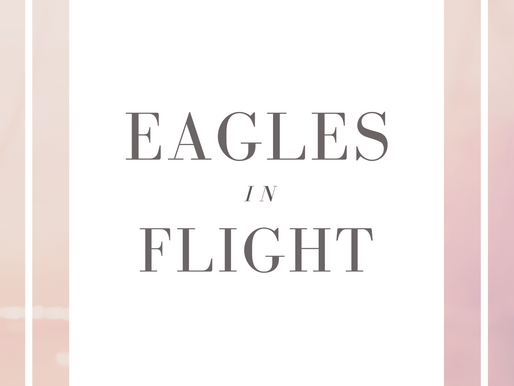 Cover Reveal ~ Eagles in Flight ~