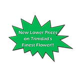 New lower prices.png