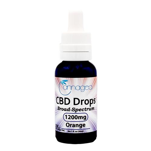 Cannagea 2400 mg CBD Tincture- Orange Citrus