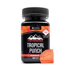 Tastebudz Tropical Punch Sativa 100mg Gummies
