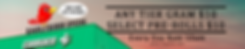 early bird banner.png