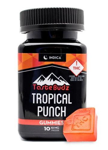 Tastebudz Tropical Punch Indica 100mg Gummies