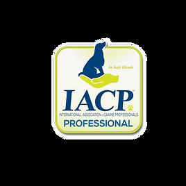 1571086518229_iacp_logo.png