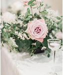 hayley floral.jpg