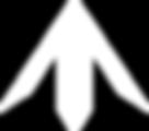 Ty's TM logo white.png