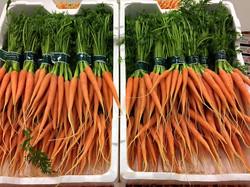Nye Gulerødder